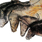 Grotte Chauvet Horses of prehistoric cave paintings