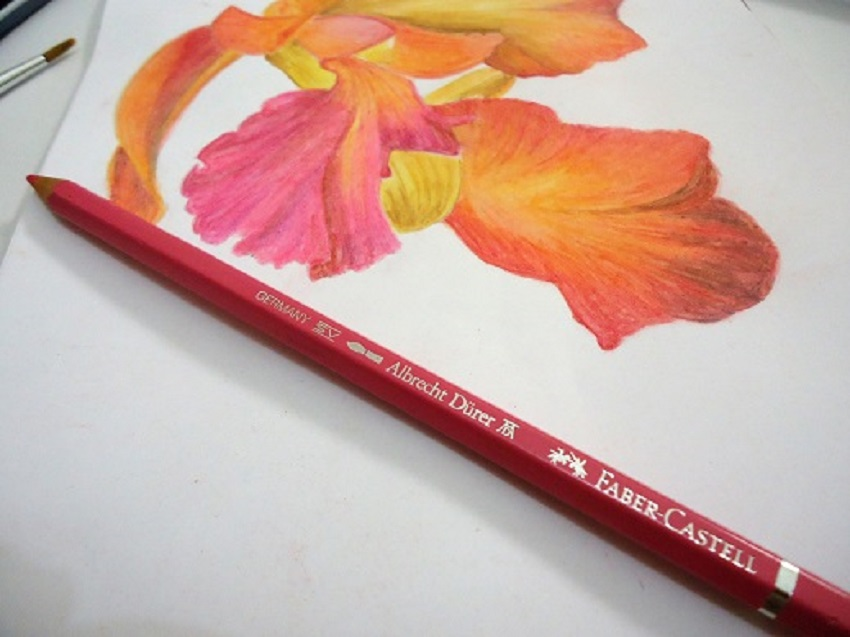 Faber Castell 72 Albrecht Durer Watercolour Pencils